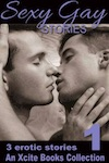 Sexy Gay Stories - Volume One - three m/m short stories